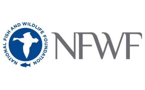 NFWF logo